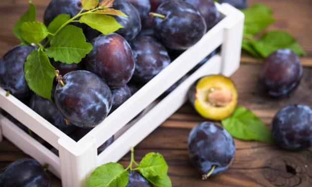 Pour des prunes!