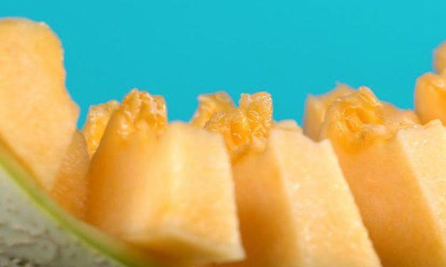 Le melon: un chef d'œuvre?
