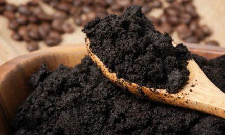 Le marc de café, votre allié 100% écolo