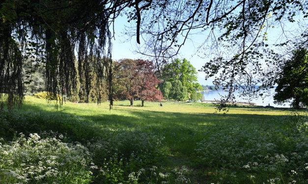 Genève de parc en parc